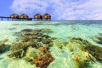 010-Maldives-016