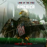Patriotic Eagle With American Flag Symbolic Overla