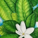 """Tahitian Gardenia"" by joeyartist"
