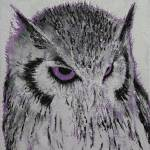 """Violet Owl"" by creese"