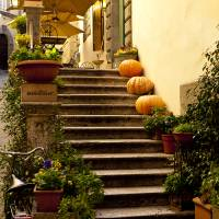 Autumn Stairwell Art Prints & Posters by Rae Tucker