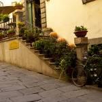 """Autumn in Cortona"" by raetucker"