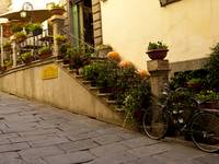 Autumn in Cortona