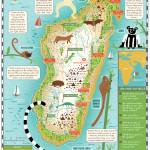 """Lemur Map of Madagascar by Nate Padavick"" by TheyDrawandCook"
