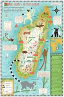 Lemur Map of Madagascar by Nate Padavick