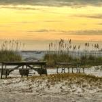 """Ponce Inlet Park"" by DBenoit"
