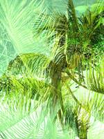 Abstract tropical double exposure background