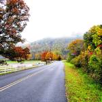 """East Tennessee Fall Colors"" by KCampbell"
