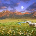 """wide world of abundance, wild horse"" by rchristophervest"