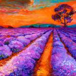"""Lavender landscape"" by boyan"