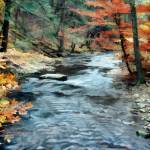 """Colorful Autumn Leaves Beside Cool Blue Stream"" by ElainePlesser"