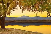Golden Autumn Through The TreesTwin Peaks View