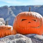 """""""Pioneer Pumpkins"""" by robertmeyerslussier"""