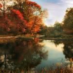 """October Finale"" by JessicaJenney"