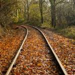 """Railroad Tracks in the fall"" by memoriesoflove"