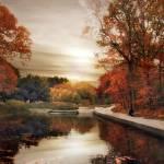 """Native Garden Reflections"" by JessicaJenney"