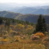 Blue Ridge Parkway Vista by Roger Dullinger