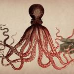 """Vintage Octopus on Parchment"" by ElainePlesser"