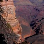 """Grand Canyon-11"" by DonnaCorless"