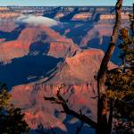"""Grand Canyon-30"" by DonnaCorless"