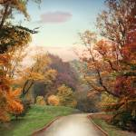 """""""Country Road"""" by JessicaJenney"""