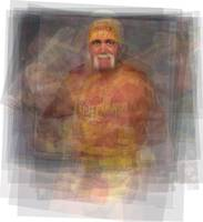 hulk hogan - named
