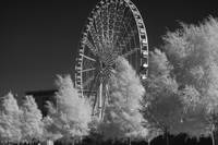Liverpool infrared