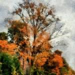 """Sketchy Sky"" by RCdeWinter"