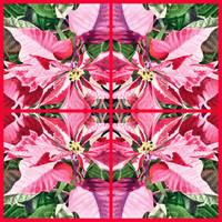 Pink Poinsettia Painting Holiday Decor
