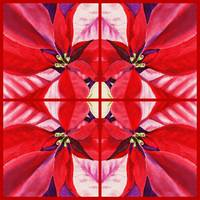 Red Poinsettia Painting Holiday Decor