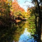 """""""Autumn Park With Bridge"""" by susansartgallery"""