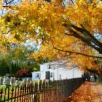 """Graveyard in Autumn"" by susansartgallery"