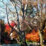 """House With Picket Fence in Autumn"" by susansartgallery"