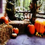 """Pumpkins on Porch"" by susansartgallery"