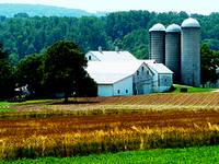 Farm With White Silos