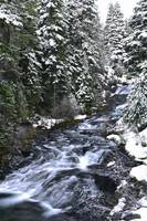 Upper Paradise Creek Winter Cascades