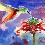 """Hummingbird on Red Flower Watercolor"" by GinetteCallaway"