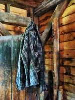 Blue Plaid Jacket in Cabin