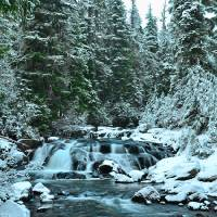 1st snow on Upper Paradise River Art Prints & Posters by JOHN CHAO