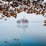 """Autumn Mist over Lake Bled"" by IanMiddletonphotography"
