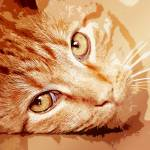 """""""A Tabby Cat"""" by AnneVis"""