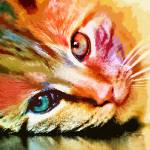 """Multi Colored Cat"" by AnneVis"