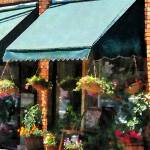 """Flower Shop With Green Awnings"" by susansartgallery"