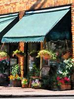 Flower Shop With Green Awnings
