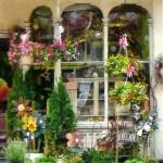 """Strasburg Flower Shop"" by susansartgallery"