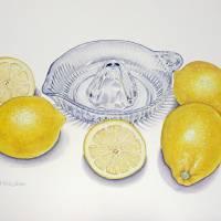 Lemons Art Prints & Posters by Joel Carlson
