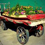 """The Old Flower Cart In Truckee CA"" by JoyceDickens"