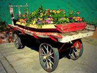 The Old Flower Cart In Truckee CA