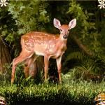 """Bambi2"" by jruiz"