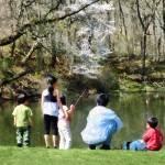 """Family Fishing"" by susansartgallery"
